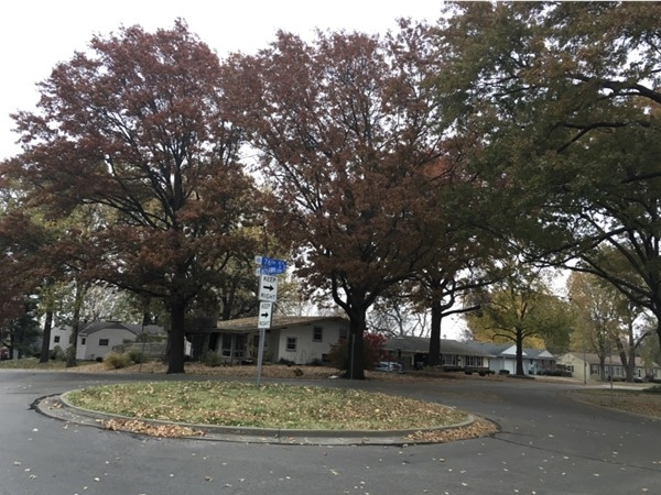 Mature trees line the streets in Mohawk Hill