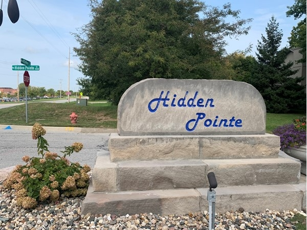 Hidden Pointe is in close proximity to the elementary and middle school