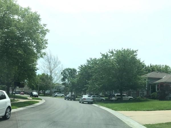 The friendly neighborhood of Blackbob Meadows