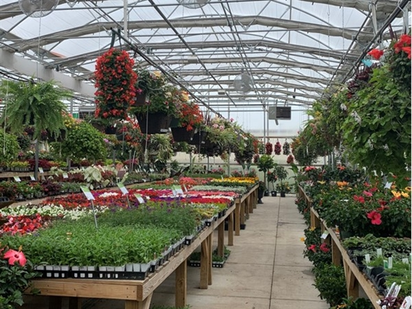 It's time to get all of your plants and flowers for the spring and summer at Colonial Nursery