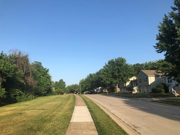 Beautiful, quiet morning in the neighborhood