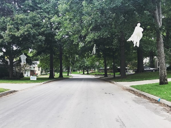 Ghosts line the trees in Old Leawood. This neighborhood does this every year, the whole street