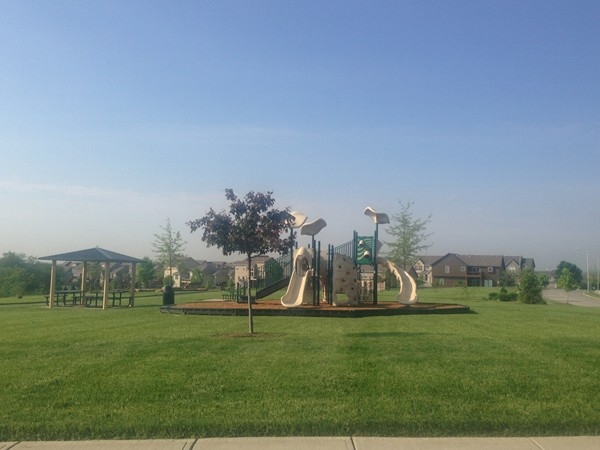 One of the playgrounds in Benson Place