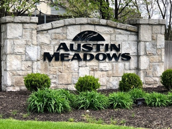 Austin Meadows has an active HOA and is a well cared for community