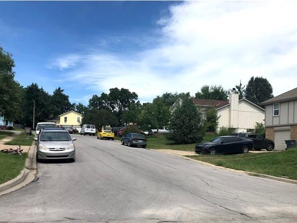 The friendly neighborhood of Rolling Meadows