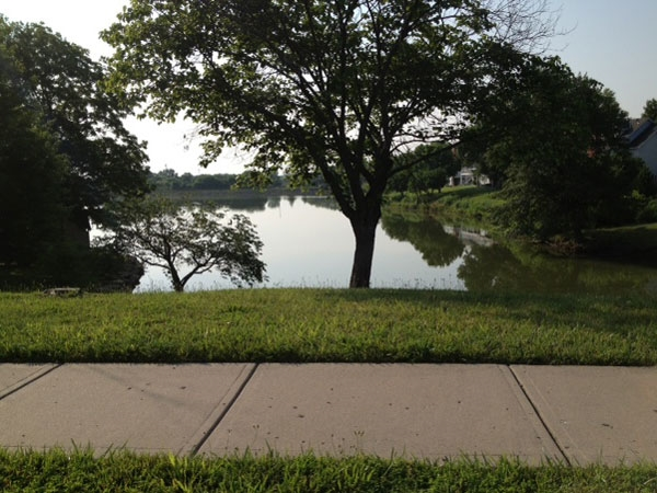Waterfield subdivision has a beautiful community lake