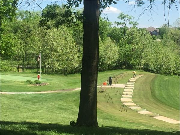 Golfers enjoying the beautiful day