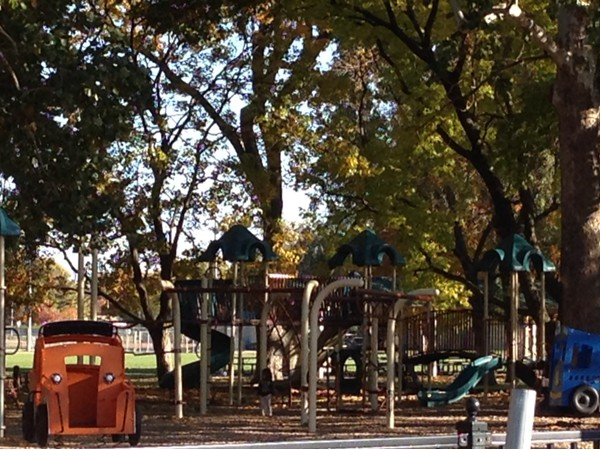 Macken Park Playground