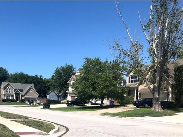 The quiet neighborhood of Spring Meadow