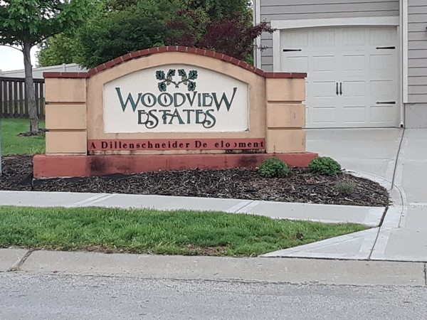 Awesome looking homes in Woodview Estates