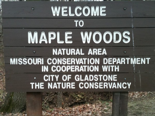 Maple Woods Natural Area in Gladstone