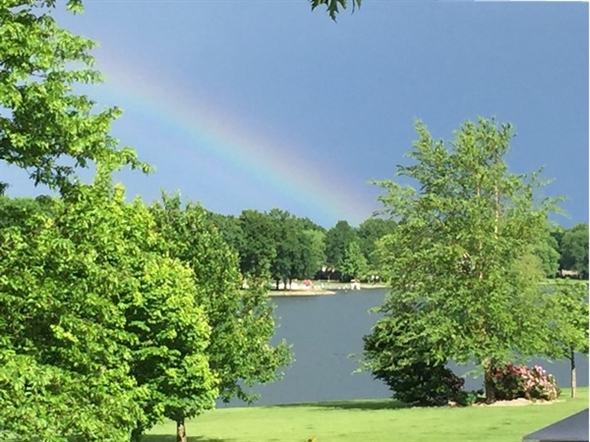"""""""It's a beautiful day in the neighborhood"""" said Mr. Rogers. Took this picture from my deck"""