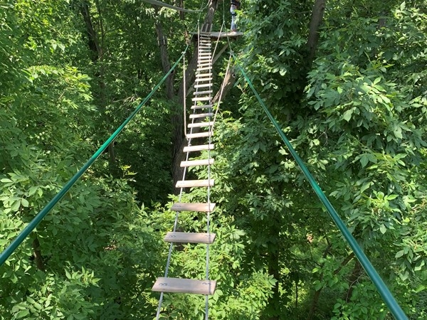 """You've got to check out GO Ape. It's a local tree top """"obstacle"""" course with zip lines"""