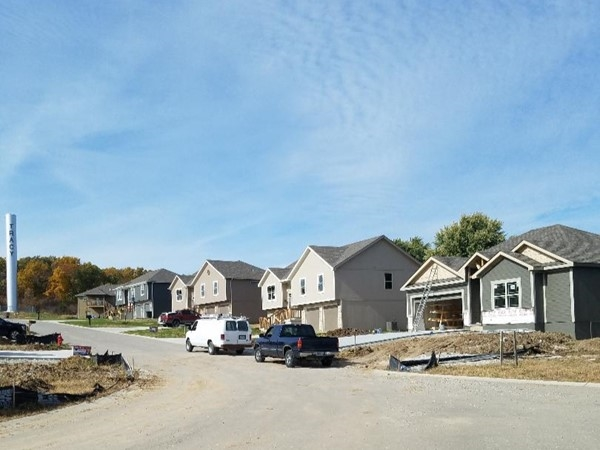 Homes are being built in Riverview