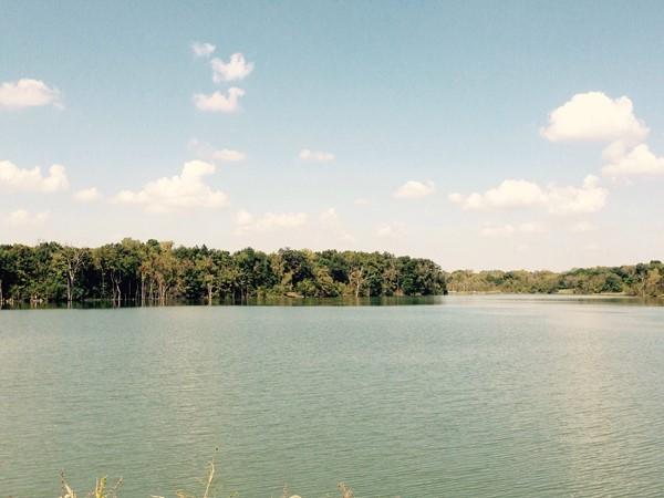A beautiful day for a lunch time walk at Lake Remembrance