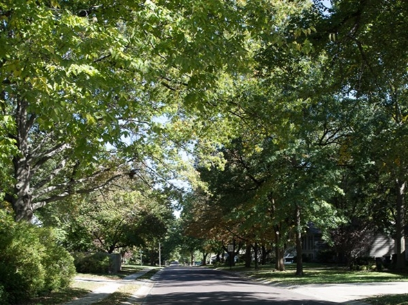 Early fall 2018 in Overland Park
