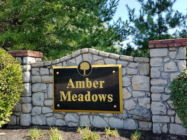 Amber Meadows in South Overland Park is an established, classic neighborhood