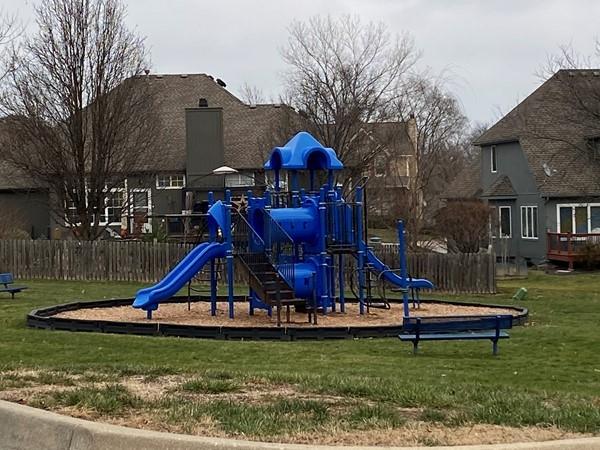 Playground at Bridlewood