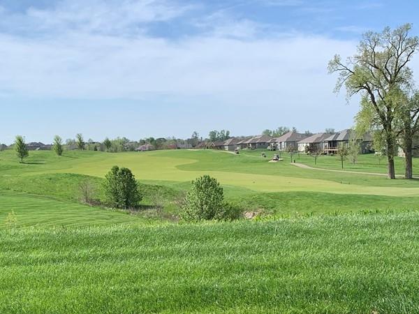 Golf course in Falcon Lakes