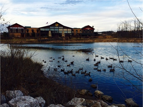 Spend the day at Bass Pro-Shop.  Eat, walk the trails, play at the park and feed the geese