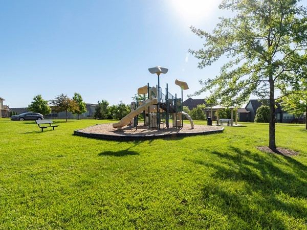Benson Place playground