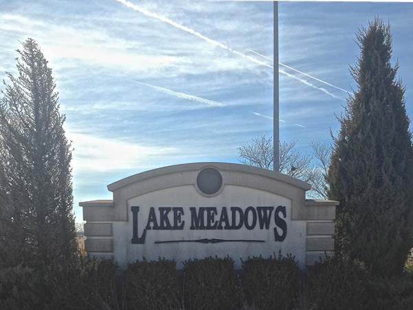 Lake Meadows subdivision