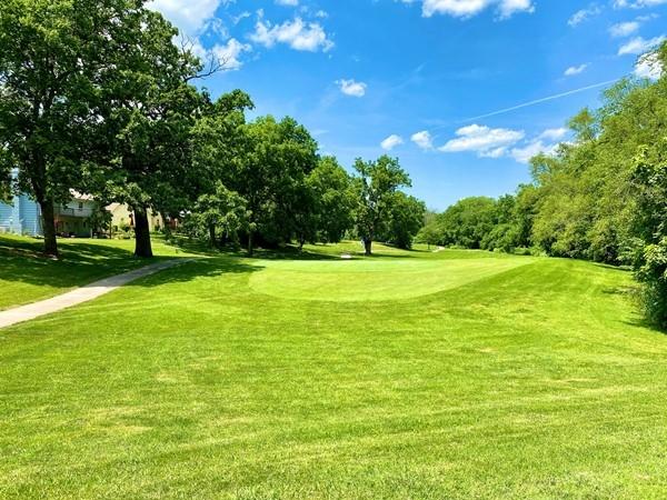 Brookridge Golf Course view from Wycliff neighborhood