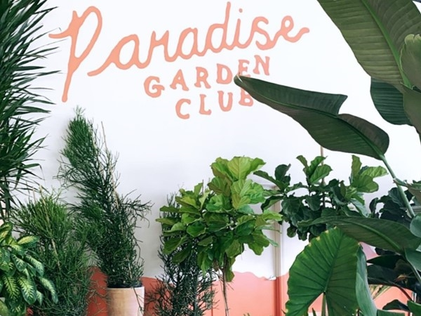 If you're looking to join the plant parent family, Paradise Garden Club is a great place to look