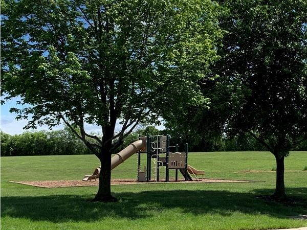 Lakepointe's playground