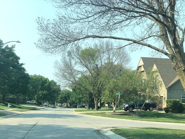 The well-maintained neighborhood of Regency Place
