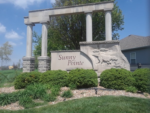 Still time to get a new home at Sunny Pointe