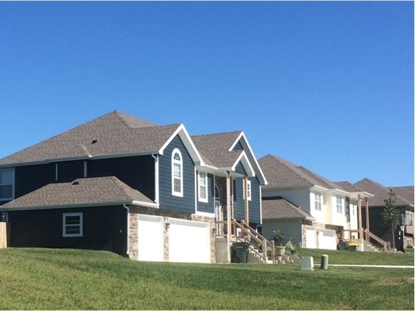 Typical homes for this subdivision