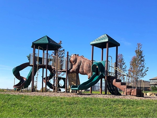 Truly something for everyone in this subdivision, check out this play place