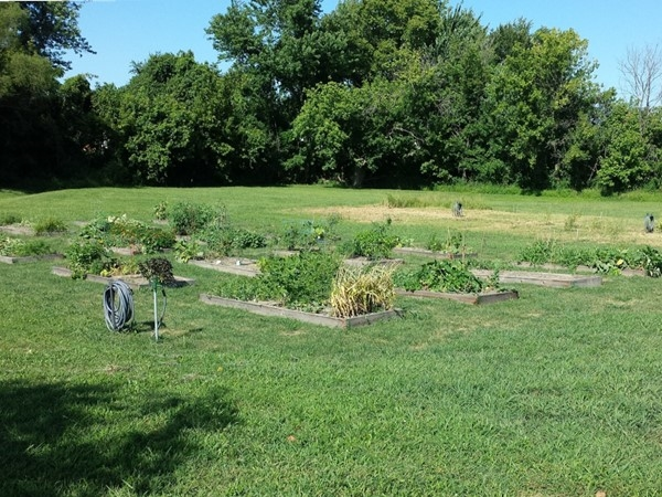 Community Garden, Grain Valley