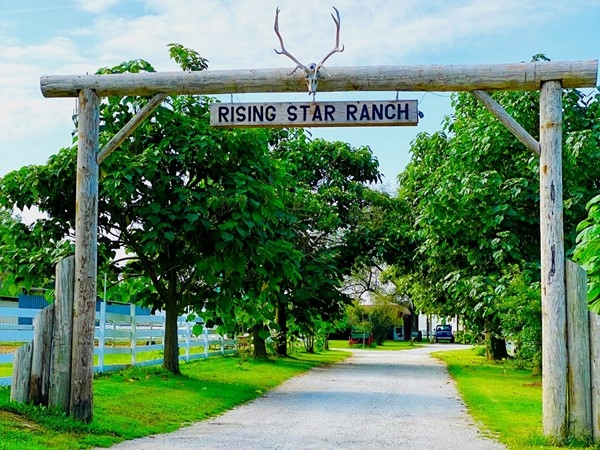 A place to enjoy horse back riding, board your horse, birthdays, and other events
