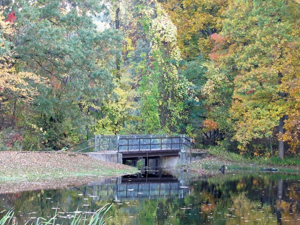 Early fall view of foot bridge at Muriel Hepner Nature Park, Denville