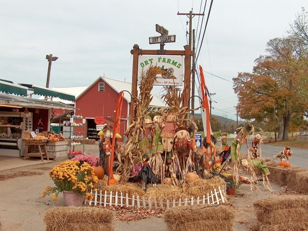 Ort's Farm all decked out for Halloween and Pumpkin picking