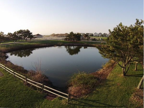The pond at Seven Presidents Oceanfront Park is a popular place with the local ducks and geese