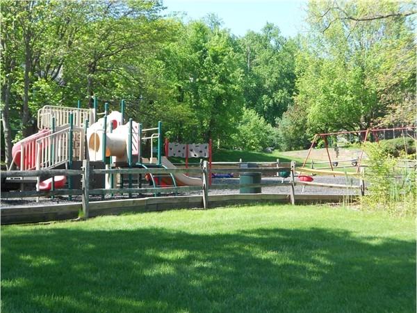 Montgomery Woods playground