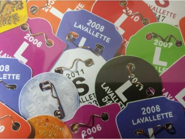 Get your seasonal beach badges