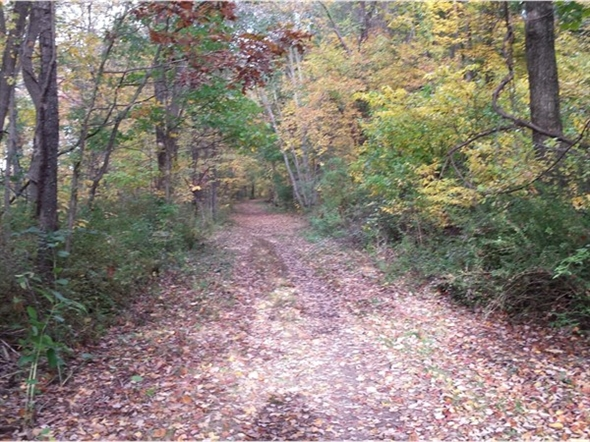 Patriots Path skirts the Black River Wildlife Preserve...great for walking or biking