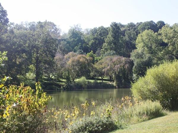 Lake in Holmdel Park