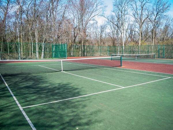 Anyone up for tennis?  I am dying to take lessons and become the next Serena or Venus Williams