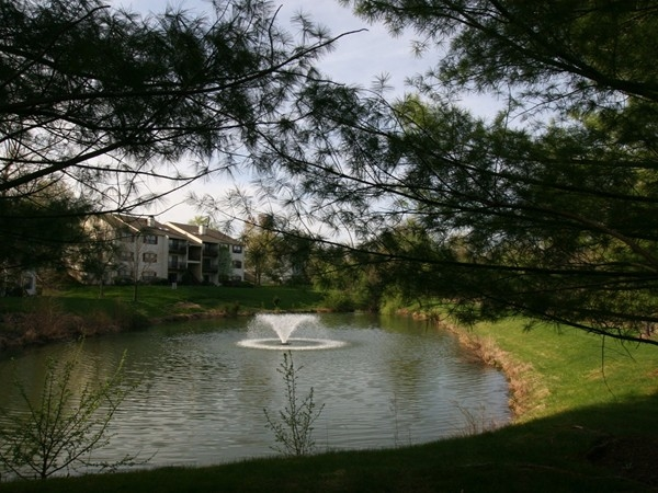 Society Hill offers a mix of townhouses and condos, featuring decorative ponds with fountains
