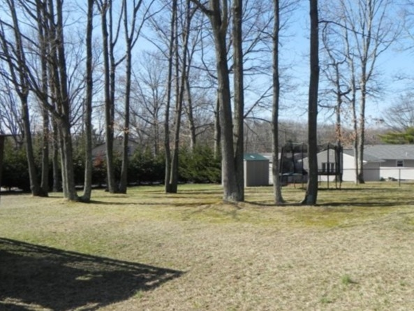 A beautiful wooded yard in the Candlewood development