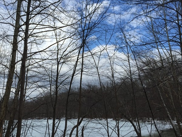 Blue skies as winter comes to an end and the ice on the Ramapo River Reserve lake begins to melt