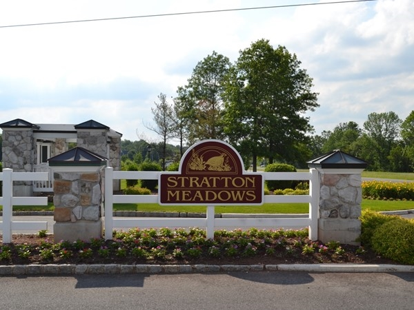 Residents of Stratton Meadow community enjoy the use of a pool, playground, and club house