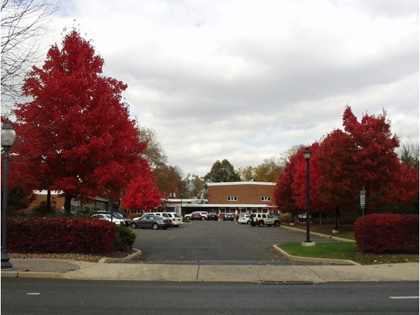 St. John's Academy Catholic Elementary School