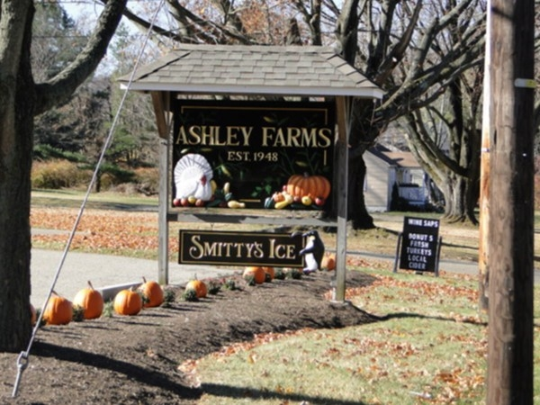 Ashley's Farm