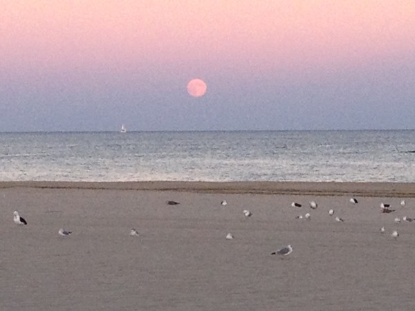 The Hunter's Moon over tranquil Point Pleasant Beach